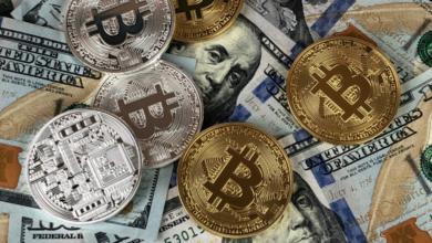 INYULFACE Salvador Bitcoin